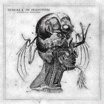 Tenebrae In Perpetuum ujawnia nowy utwór