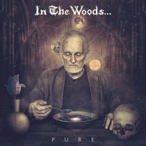 IN THE WOODS...: posłuchaj pierwszego utworu z 'Pure'