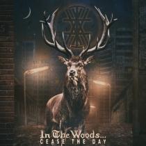 Premiera nowego utworu In The Woods