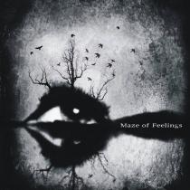 Odsłuch pełnej płyty Maze Of Feelings